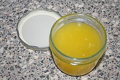Zitronenaufstrich 23