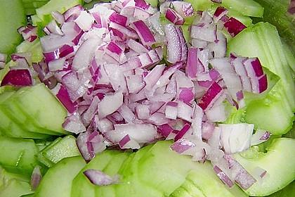 Asiatischer Gurkensalat 17