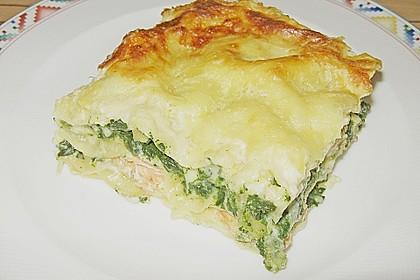 Lachs - Lasagne 3