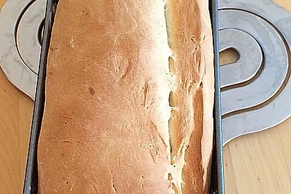 Sandwichbrot (Bild)