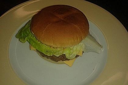Cheeseburger 6