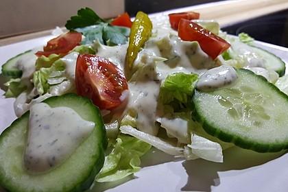 Salatdressing 48