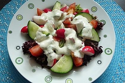 Salatdressing 13