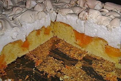 Aprikosen - Apfelschnitten mit Baiser 1