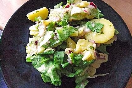 Libanesischer Kartoffelsalat würzig - pikant 15