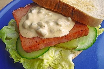 Hamburger Dressing 14