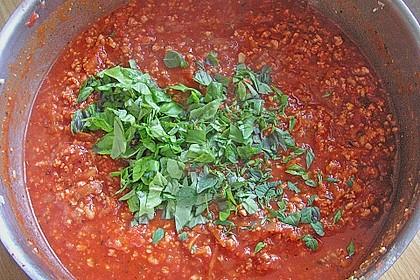 Soja - Soße nach Bolognese - Art 6