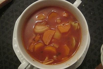 Leckere Gemüse - Tomaten - Suppe mit Tortellini (Bild)