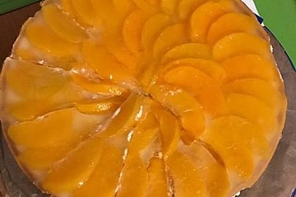 Obstkuchen 6