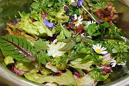 Wildkräutersalat für die Frühjahrskur