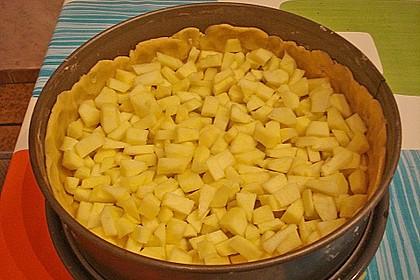 Apfel - Käsekuchen 37