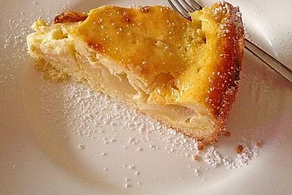 Apfel - Käsekuchen 9
