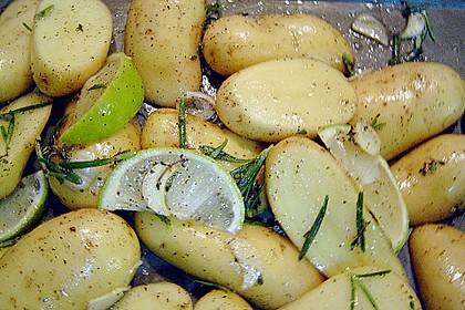 Toskana - Kartoffeln 3
