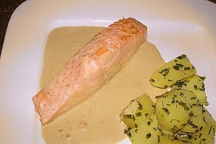 Wildlachsfilet in Honig-Senf Sauce 3