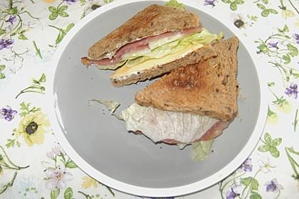 Hillbilly Sandwich 2