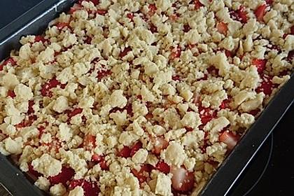 Erdbeer - Streuselkuchen 12
