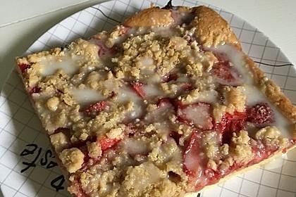 Erdbeer - Streuselkuchen 14