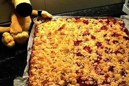 Erdbeer - Streuselkuchen 7