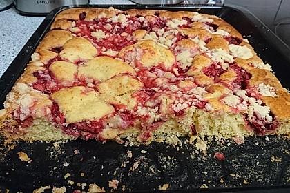 Erdbeer - Streuselkuchen 28