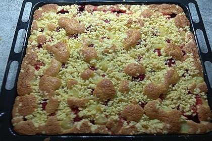 Erdbeer - Streuselkuchen 22