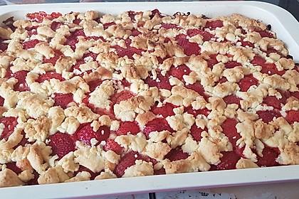 Erdbeer - Streuselkuchen 27