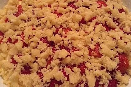 Erdbeer - Streuselkuchen 26