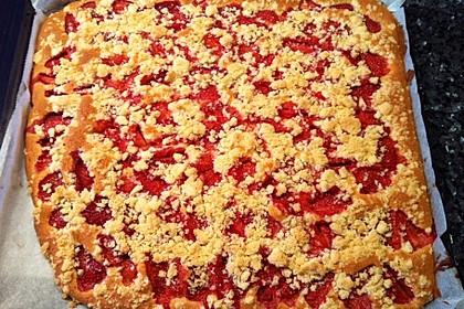 Erdbeer - Streuselkuchen 25
