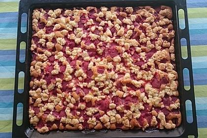 Erdbeer - Streuselkuchen 19