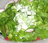 Joghurt - Dressing (Bild)