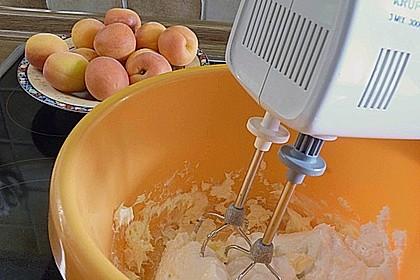 Roros 'auslaufsichere' Anfänger - Aprikosenknödel mit ganzen Früchten - ohne Eier 7