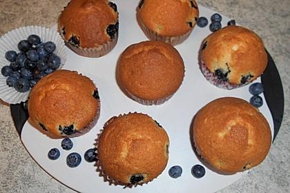 Blaubeer-Muffins (Bild)