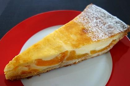 Schmand - Pudding - Mandarinen - Torte 5