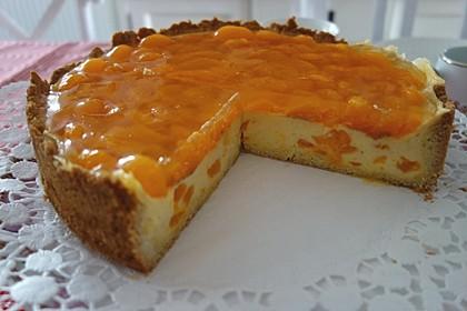 Schmand - Pudding - Mandarinen - Torte 10