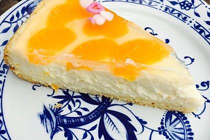 Schmand - Pudding - Mandarinen - Torte 17