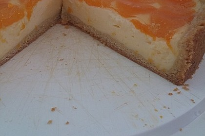 Schmand - Pudding - Mandarinen - Torte 27