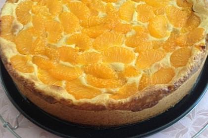 Schmand - Pudding - Mandarinen - Torte 14