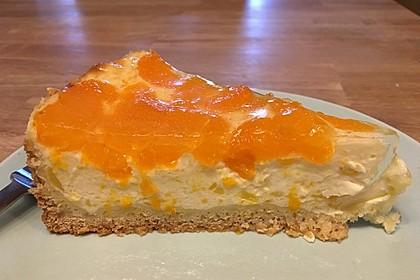 Schmand - Pudding - Mandarinen - Torte 32