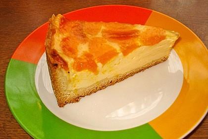 Schmand - Pudding - Mandarinen - Torte 22