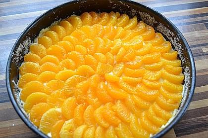 Schmand - Pudding - Mandarinen - Torte 12