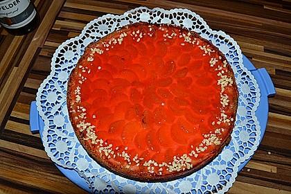 Schmand - Pudding - Mandarinen - Torte 7