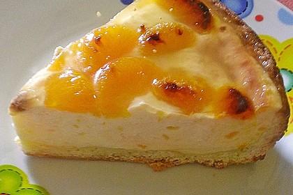 Schmand - Pudding - Mandarinen - Torte 6