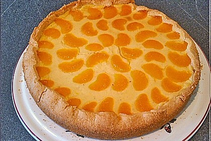 Schmand - Pudding - Mandarinen - Torte 36