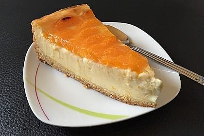 Schmand - Pudding - Mandarinen - Torte 20