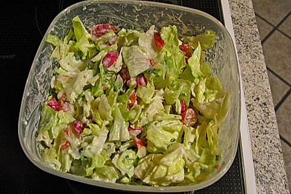 Bunter Salat mit Joghurtdressing 7