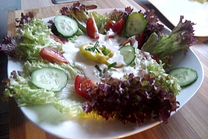 Bunter Salat mit Joghurtdressing 9