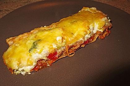 Enchiladas nach Utes Art 1