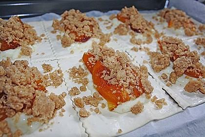 Zwetschgenschnitten mit Pudding und Nuss - Streuseln 15