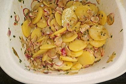 Schneller Kartoffel - Radieschen - Salat 8