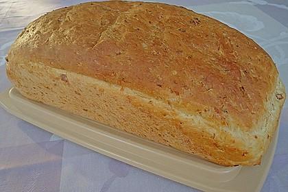 Zwiebel-Käse-Schinken-Brot 51