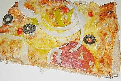 Pizzaboden - dünn und knusprig 32
